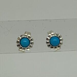 /Sleeping Beauty Turquoise Stud Earrings